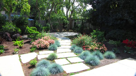 Drought Tolerant Backyard Designs a contemporary west coast drought tolerant garden with hidcote lavender english as one of Drought Tolerant